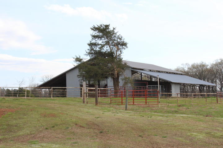 Large photo 53 of home for sale at 13682 Cedar Creek Road, Havana, AR