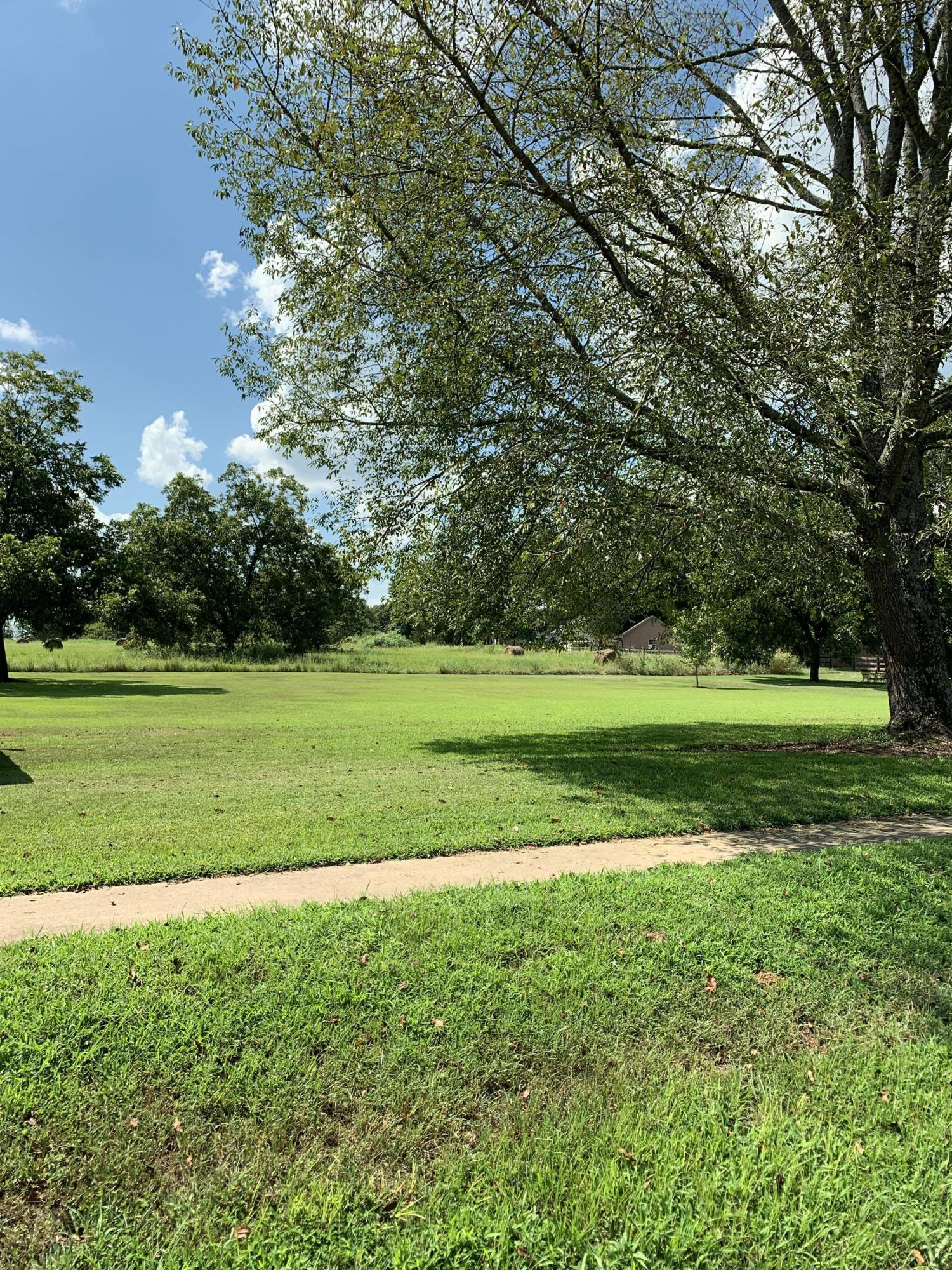 Large photo 4 of home for sale at 501 Hayes Street, Clarksville, AR