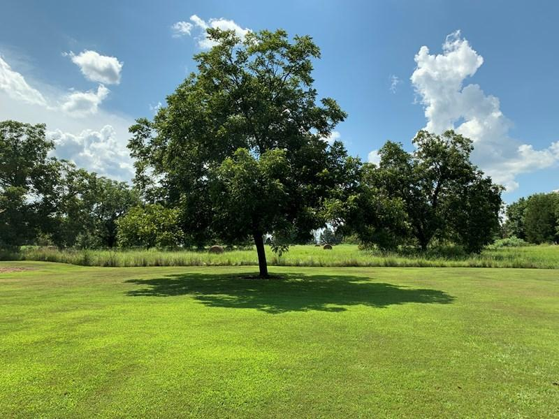Large photo 46 of home for sale at 501 Hayes Street, Clarksville, AR
