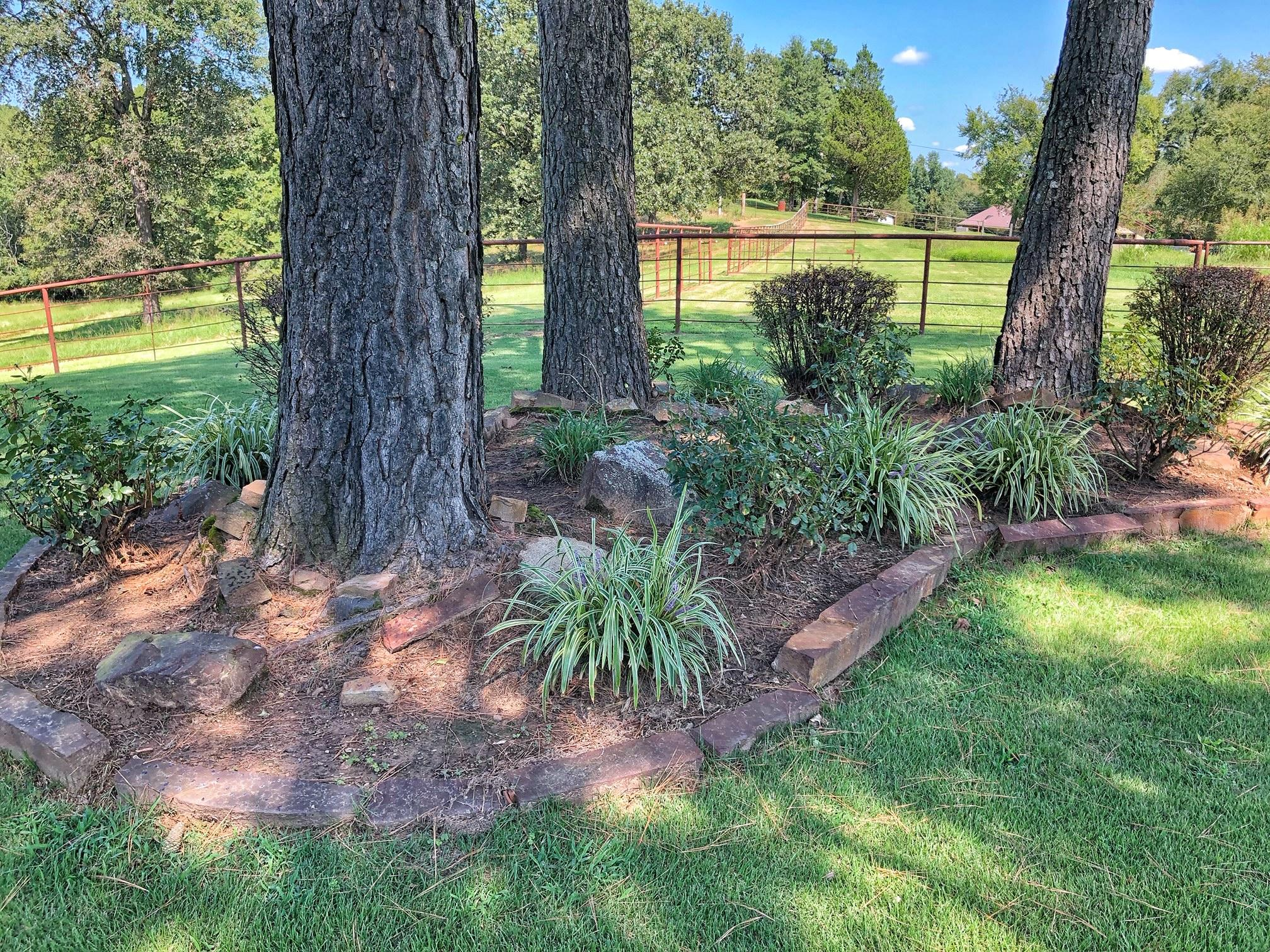 Large photo 48 of home for sale at 18015 E. State Highway 28 , Ola, AR