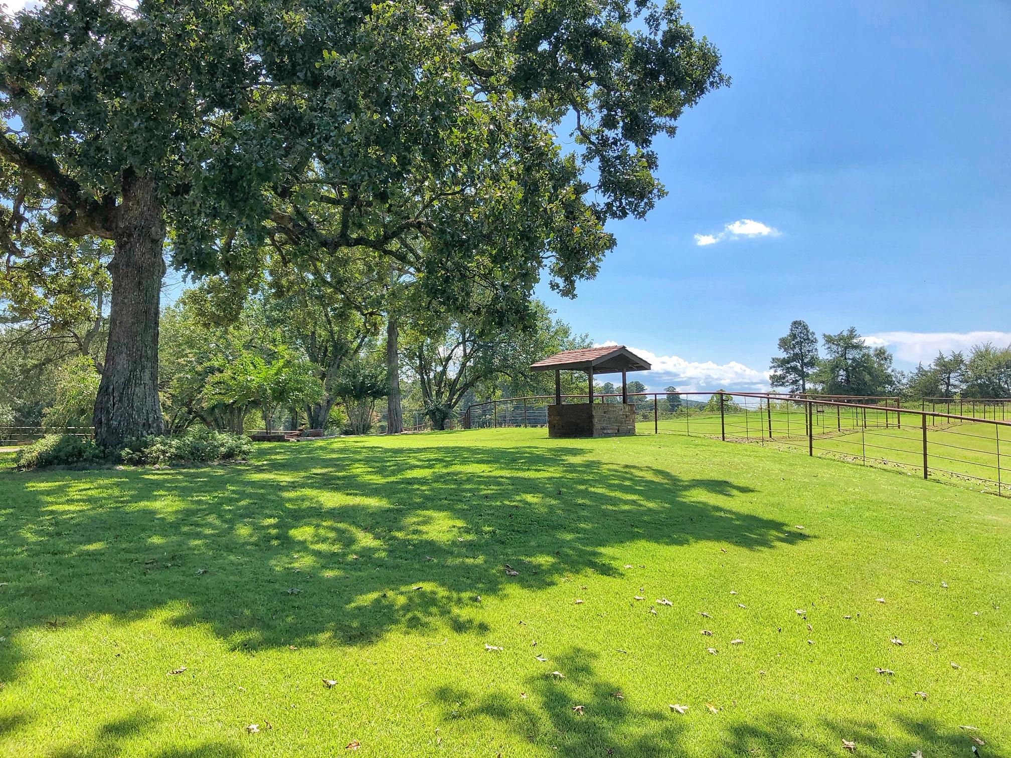 Large photo 46 of home for sale at 18015 E. State Highway 28 , Ola, AR