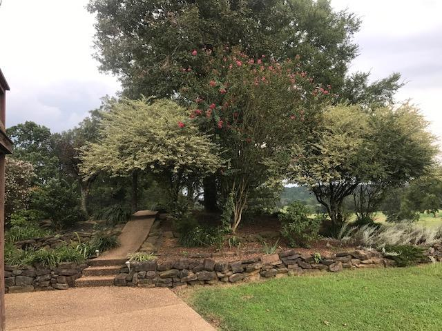 Large photo 20 of home for sale at 55 Rhoades Drive, Jerusalem, AR