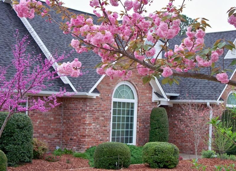 Large photo 35 of home for sale at 692 Bayview Circle, Knoxville, AR