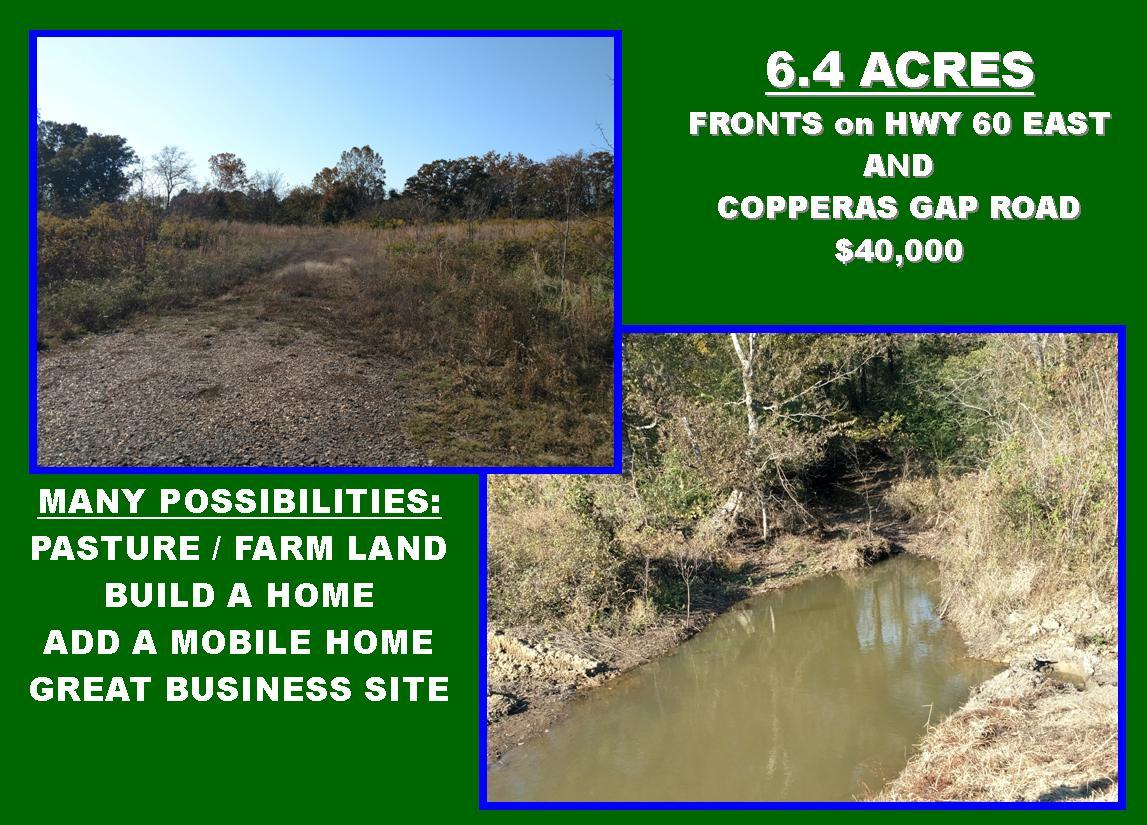 Large photo 2 of land for sale at 00 Copperas Gap Road, Houston, AR, listed by ERA Team Real Estate