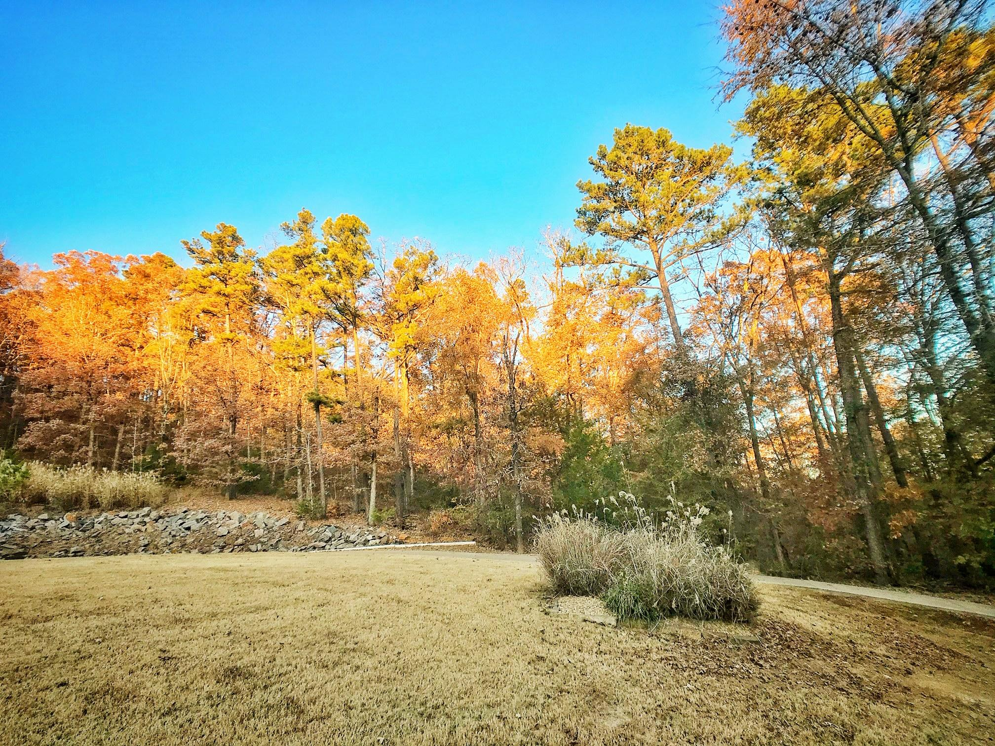 Large photo 38 of home for sale at 3715 Bailey Loop Road, Russellville, AR