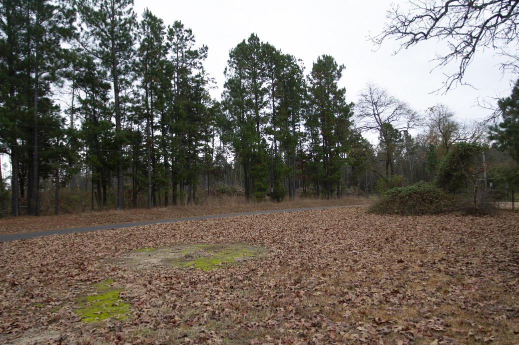 Large photo 23 of home for sale at 1381 Vaughn Circle, Dover, AR