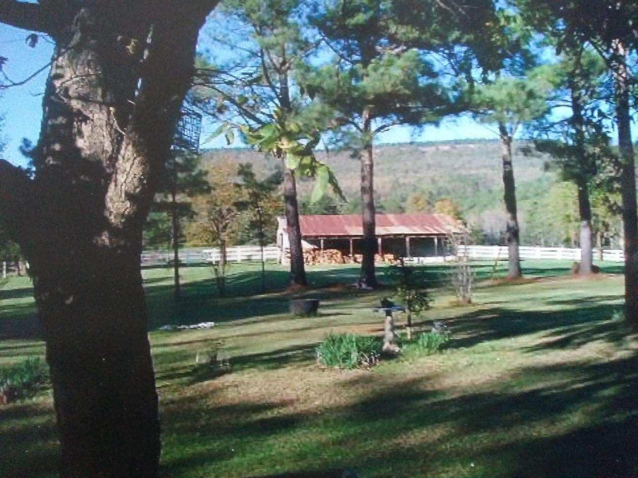 Large photo 14 of home for sale at 10148 Rob Hill Road, Dardanelle, AR