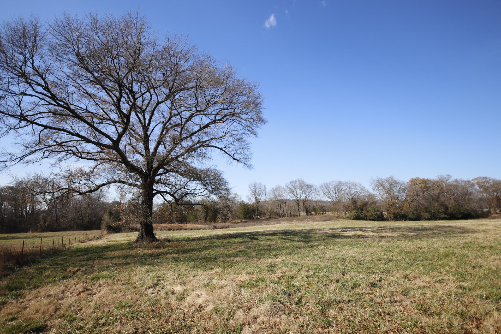 Large photo 86 of home for sale at 600 stegall Road, Clarksville, AR