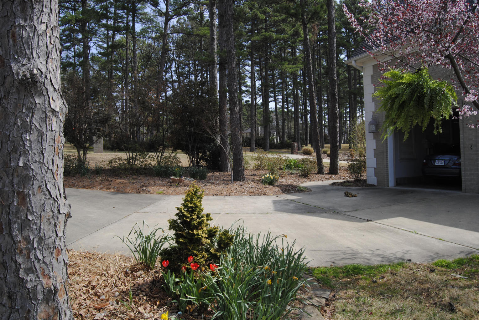 Large photo 15 of home for sale at 6 Rim Rock Road, Russellville, AR