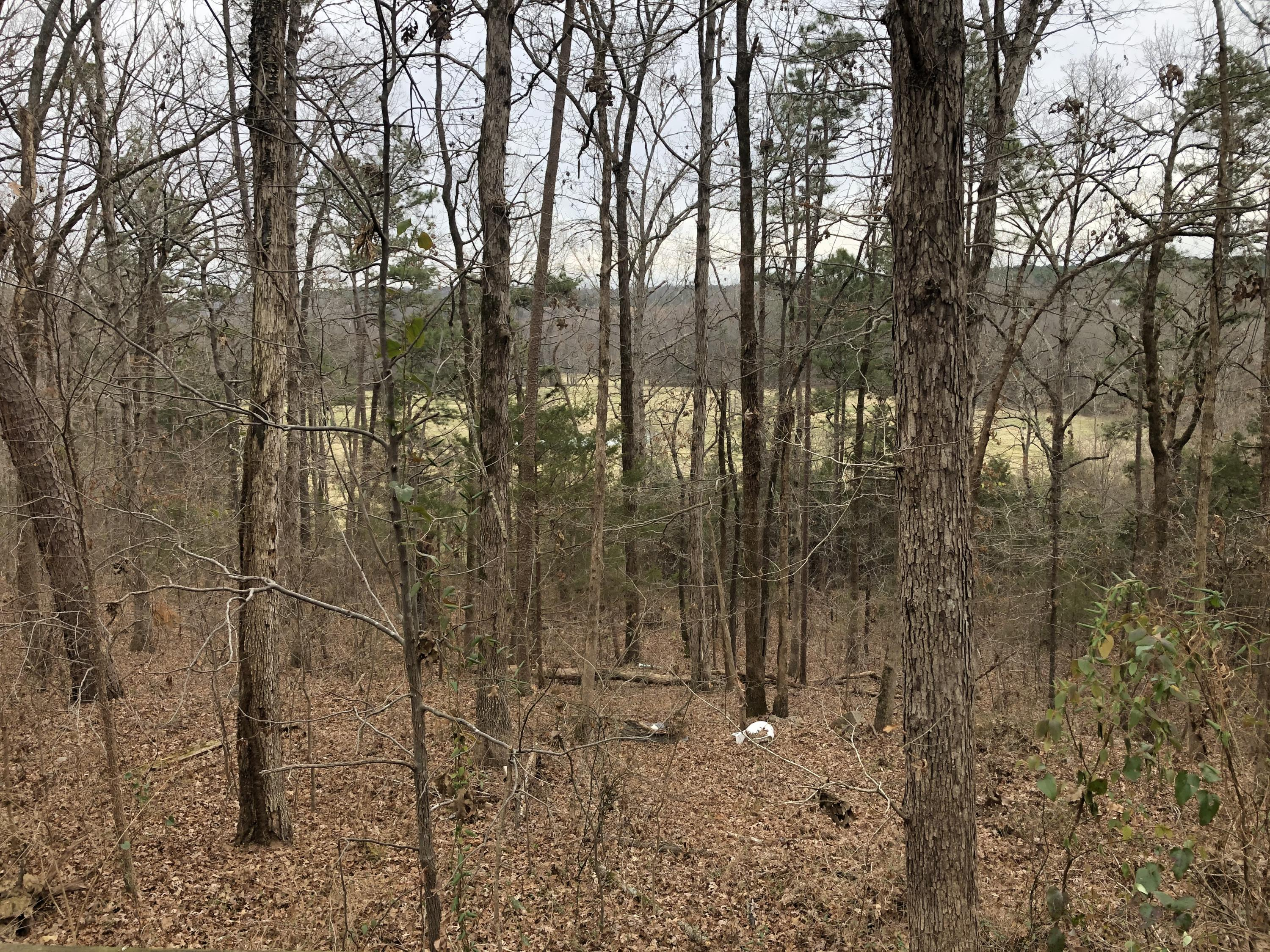 Large photo 12 of home for sale at 2088 Whorton Mountain Road, London, AR