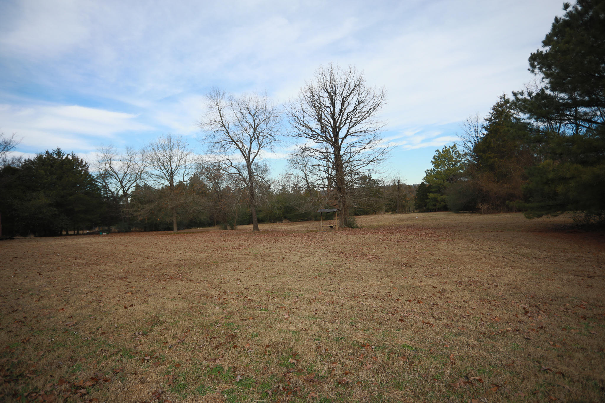 Large photo 2 of home for sale at 894 Sparksford Drive, Russellville, AR