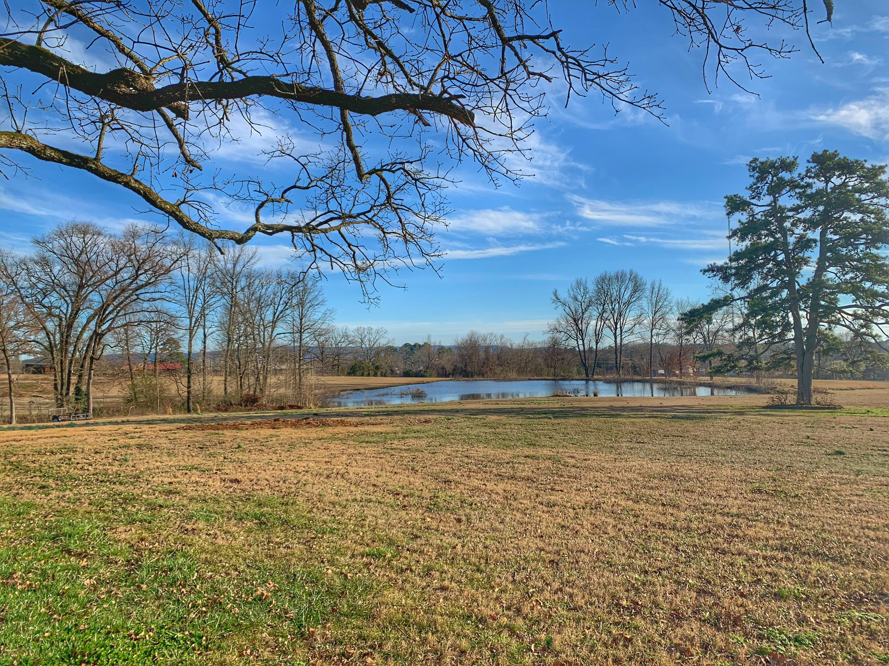 Large photo 1 of home for sale at 46 Fronabarger Road, Atkins, AR