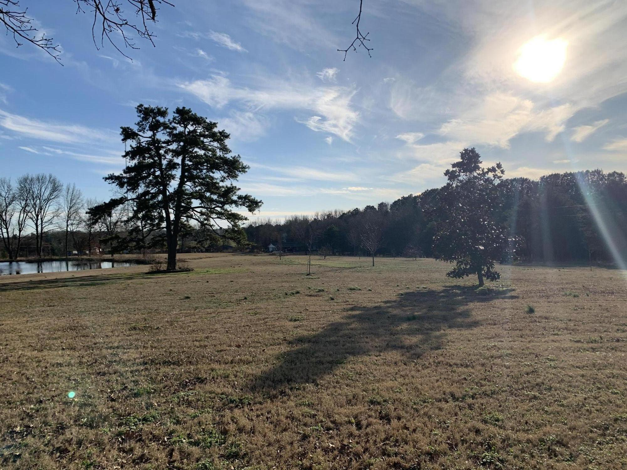 Large photo 4 of home for sale at 46 Fronabarger Road, Atkins, AR