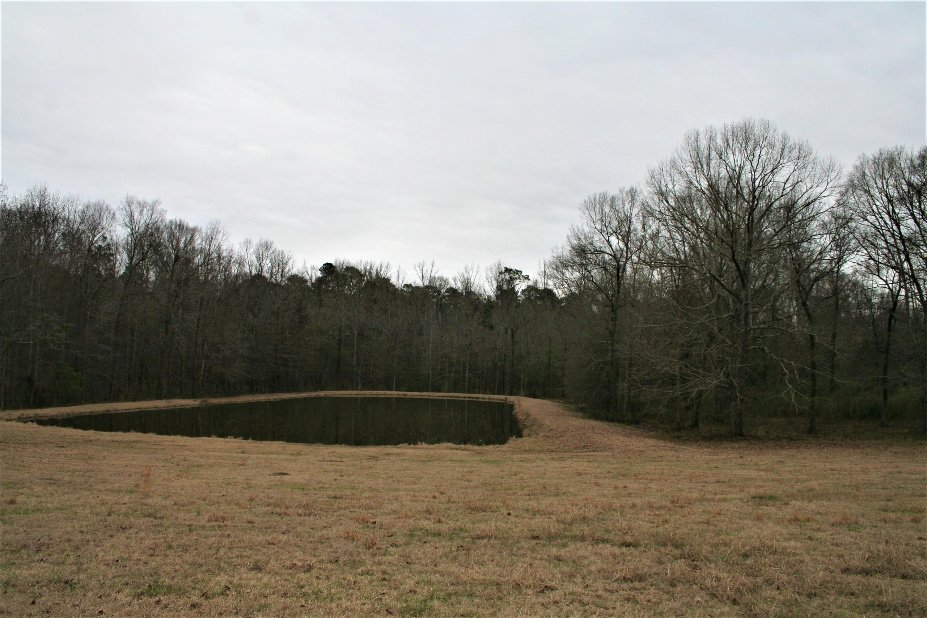 Large photo 10 of home for sale at 2888 Hendrix Road, Malvern, AR