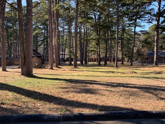 Large photo 80 of home for sale at 6 Pinecrest Drive, Russellville, AR