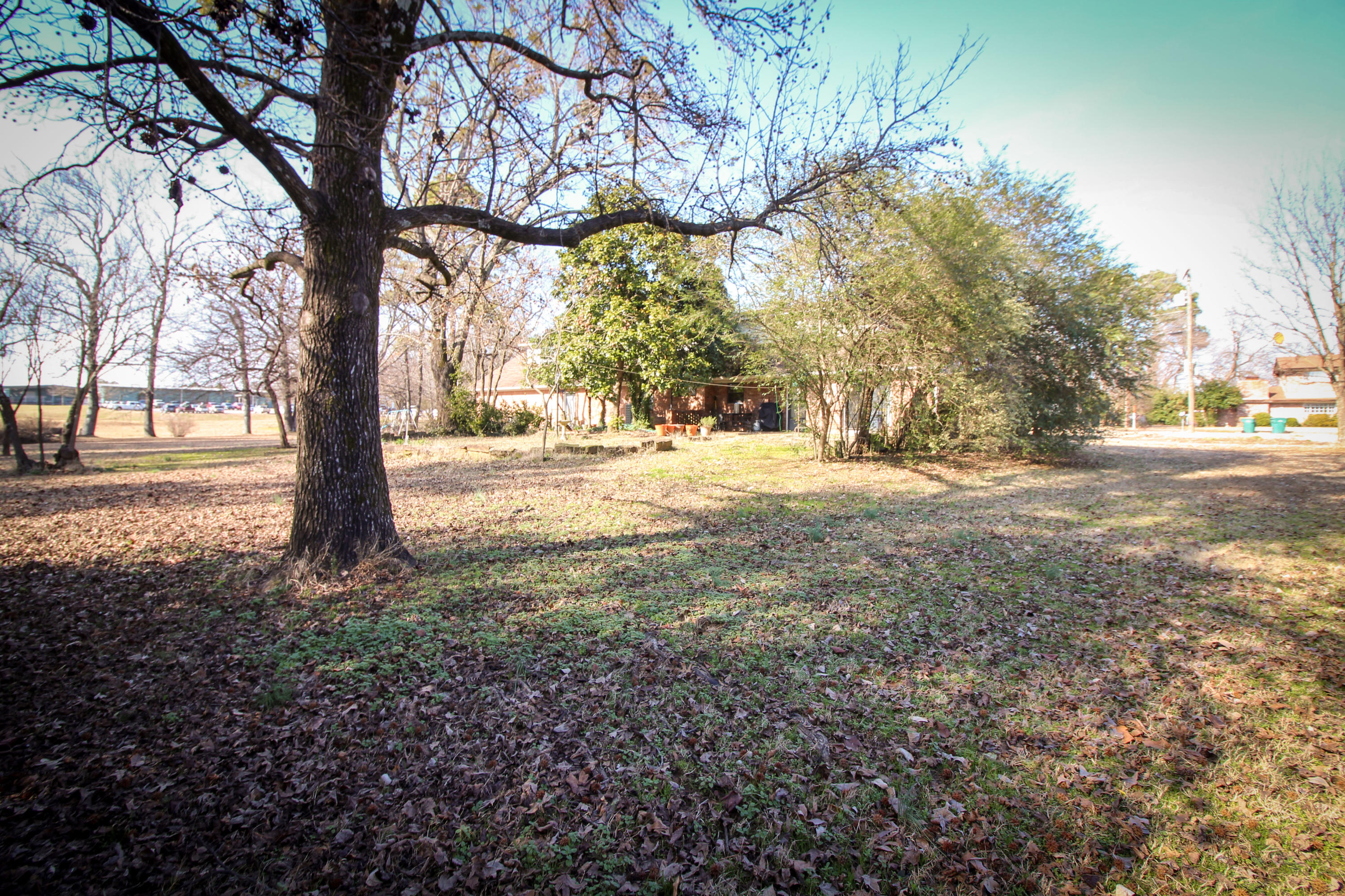 Large photo 29 of home for sale at 111 Harrell Drive, Russellville, AR