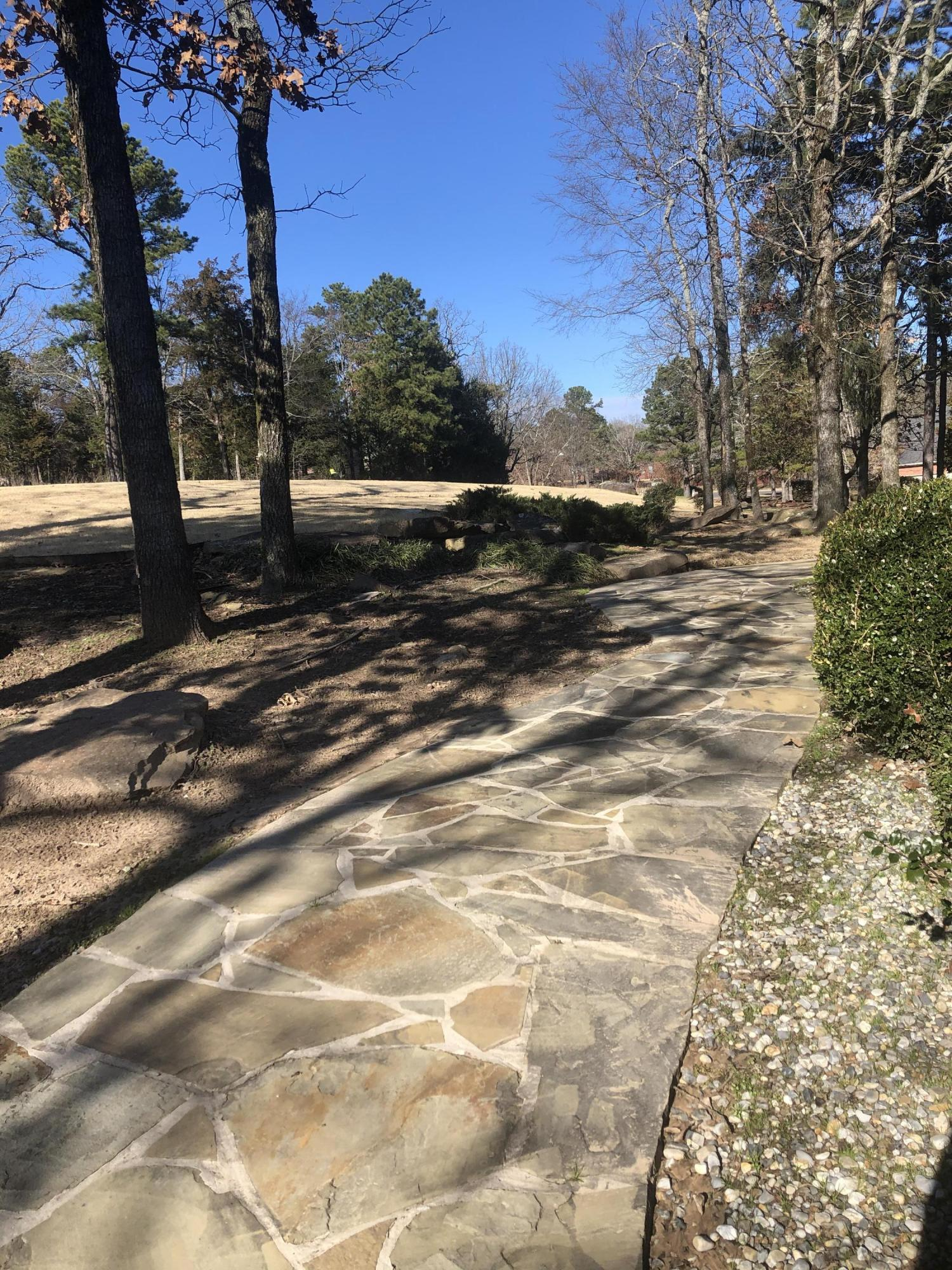 Large photo 54 of home for sale at 113 Skyridge Road, Russellville, AR