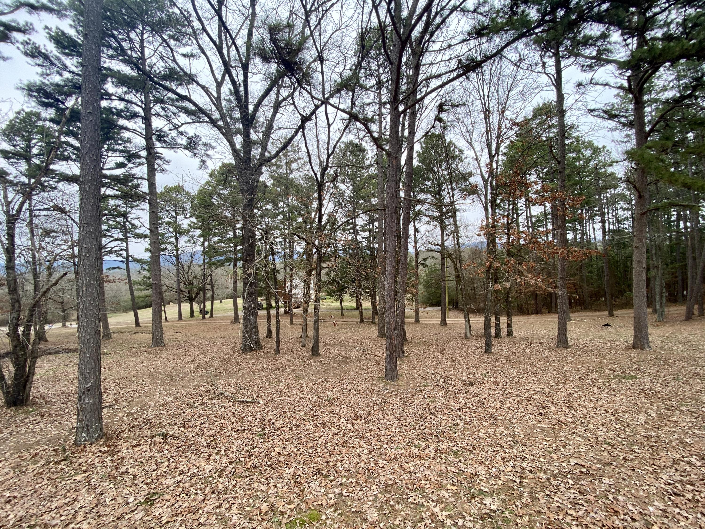 Large photo 63 of home for sale at 985 CR 3380 , Clarksville, AR