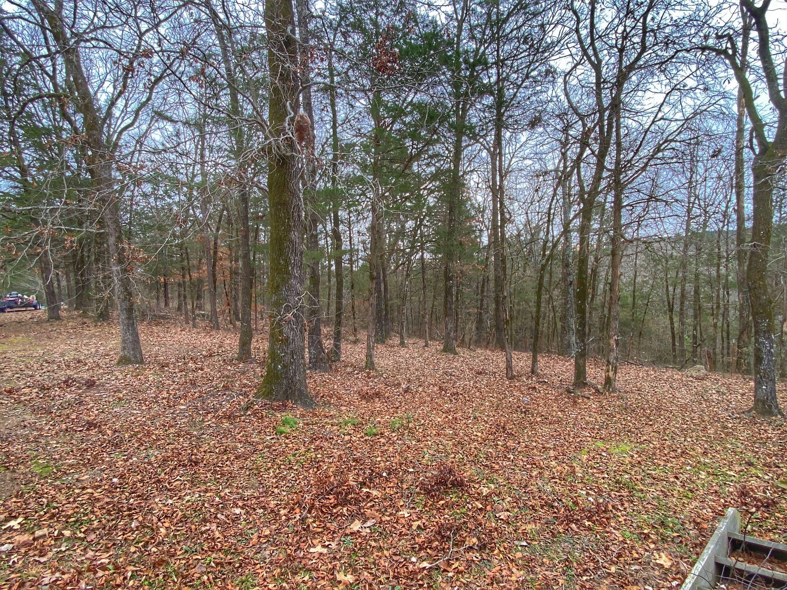 Large photo 42 of home for sale at 985 CR 3380 , Clarksville, AR