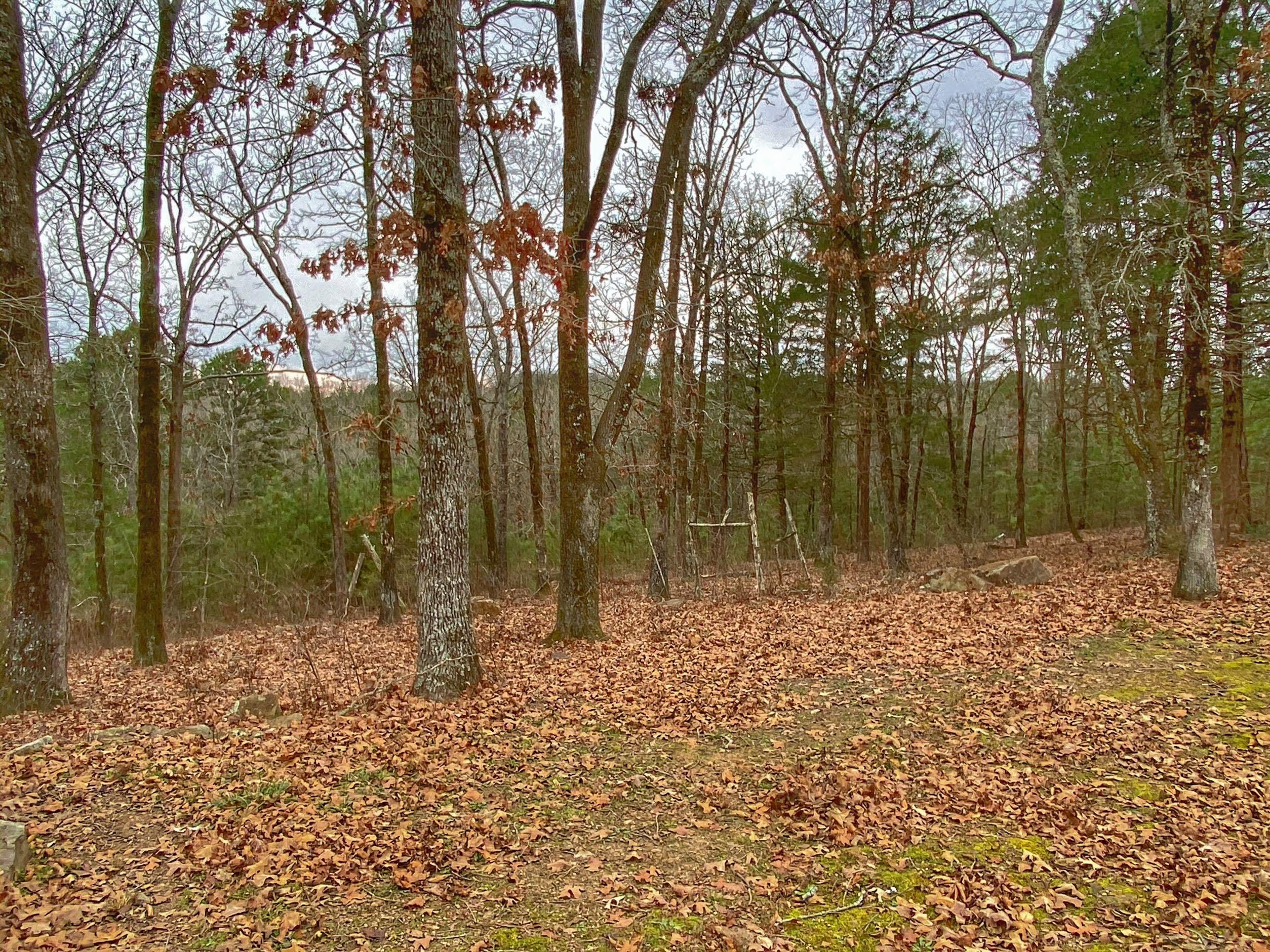 Large photo 44 of home for sale at 985 CR 3380 , Clarksville, AR