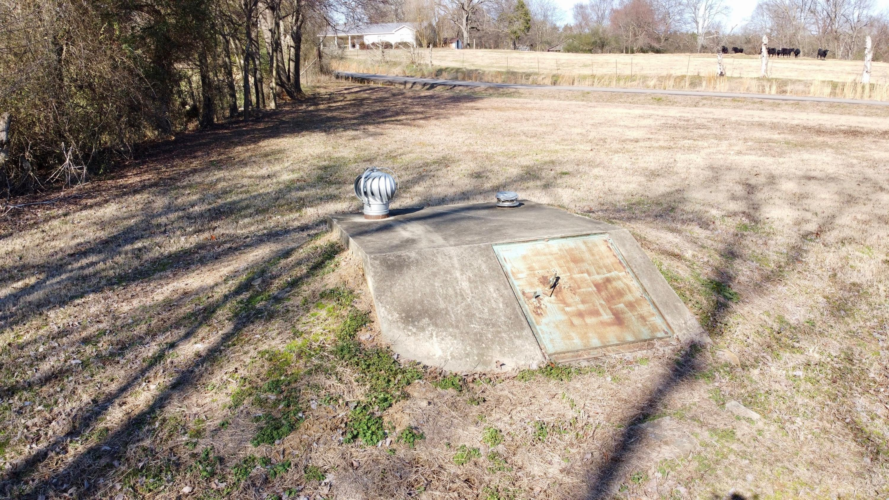 Large photo 3 of home for sale at 12514 Ard Road, Dardanelle, AR