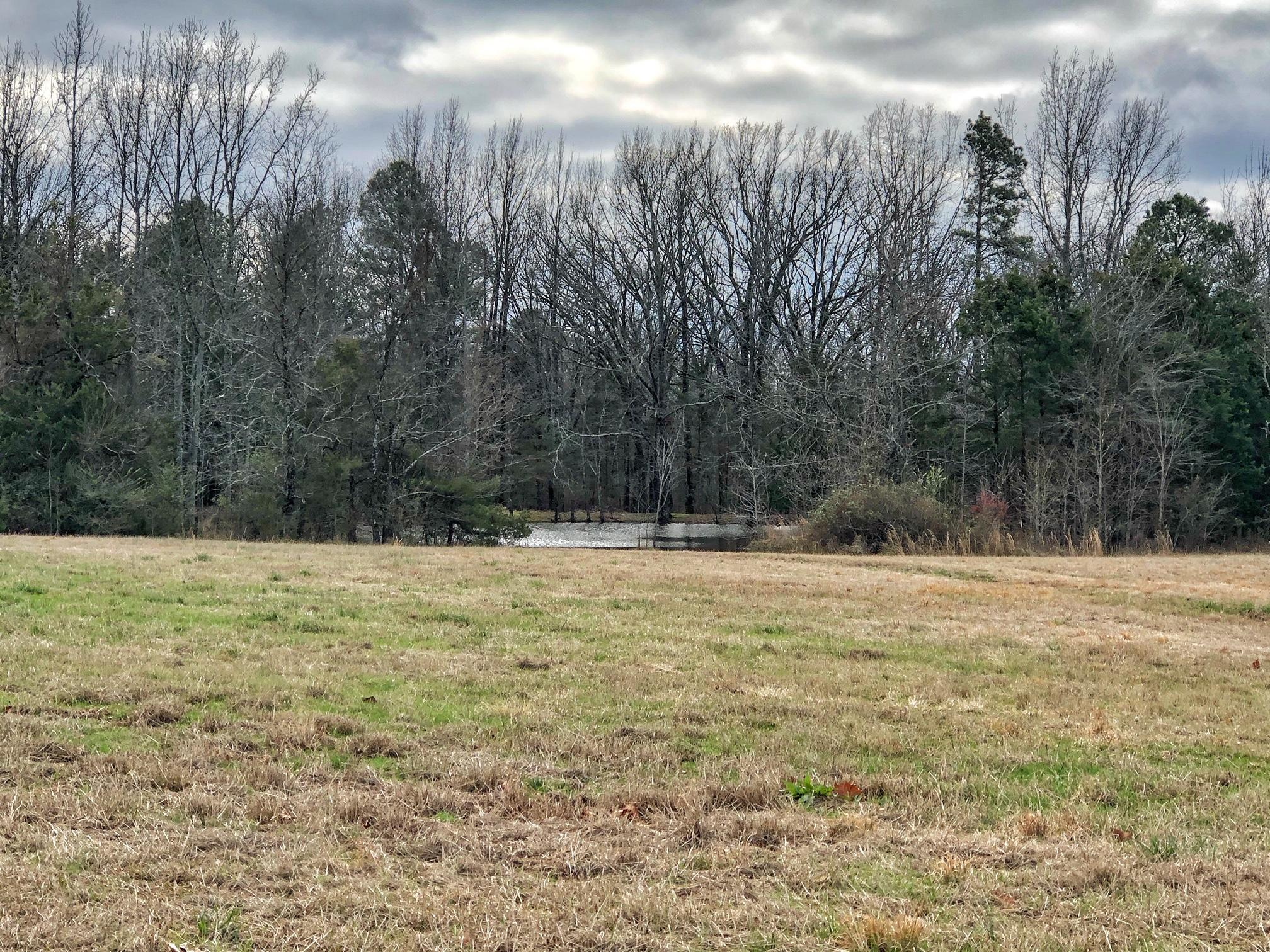 Large photo 48 of home for sale at 3070 Pine Ridge Road, Atkins, AR