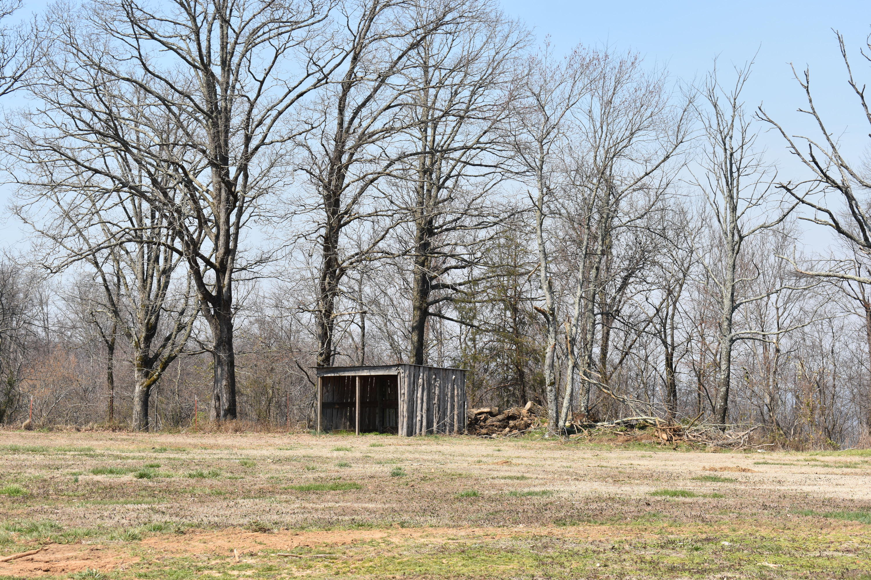 Large photo 15 of land for sale at 5867 Co Rd 4160 , Oark, AR, listed by Coldwell Banker Premier Realty