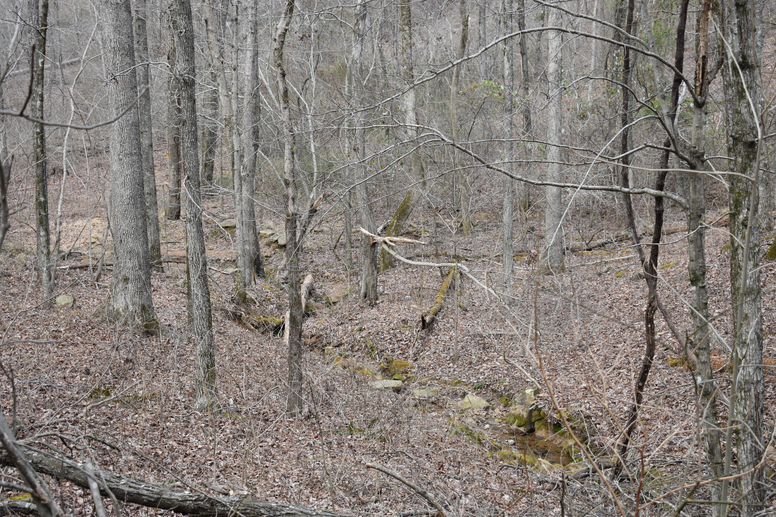 Large photo 26 of land for sale at 5867 Co Rd 4160 , Oark, AR, listed by Coldwell Banker Premier Realty