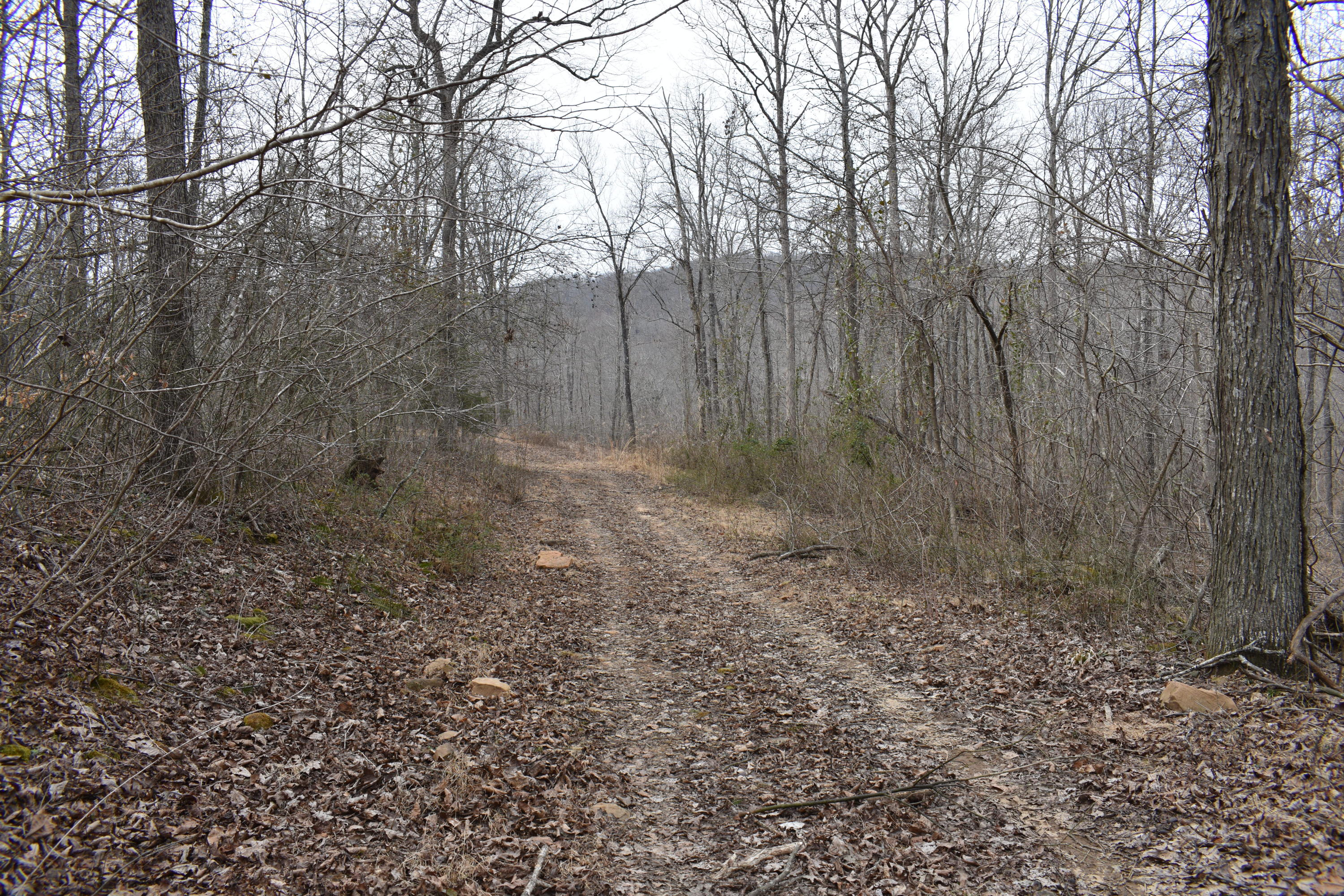 Large photo 27 of land for sale at 5867 Co Rd 4160 , Oark, AR, listed by Coldwell Banker Premier Realty