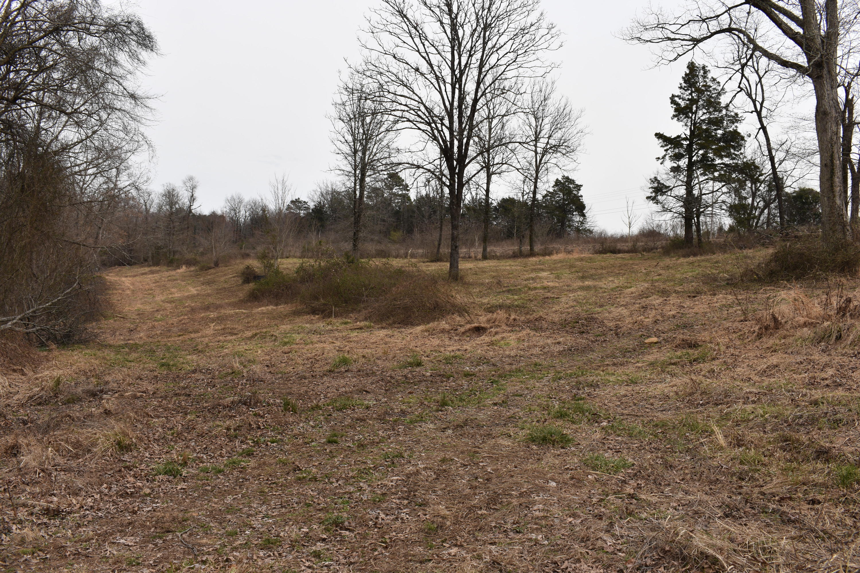 Large photo 29 of land for sale at 5867 Co Rd 4160 , Oark, AR, listed by Coldwell Banker Premier Realty