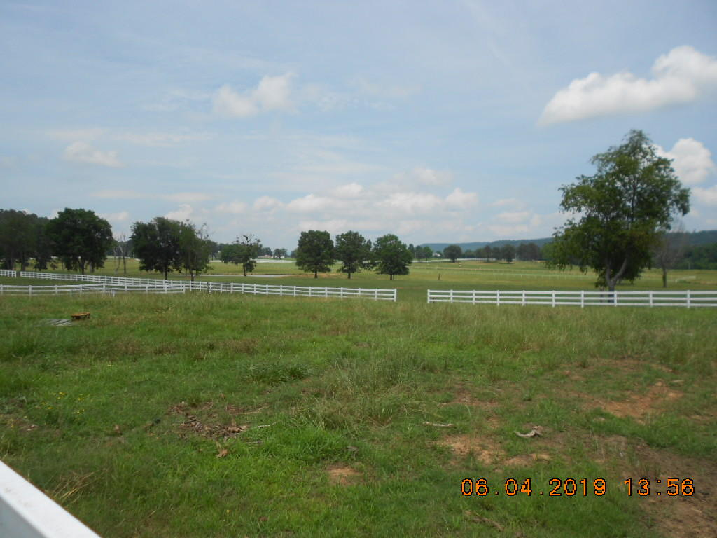 Large photo 57 of home for sale at 13148 AR-124 , Russellville, AR