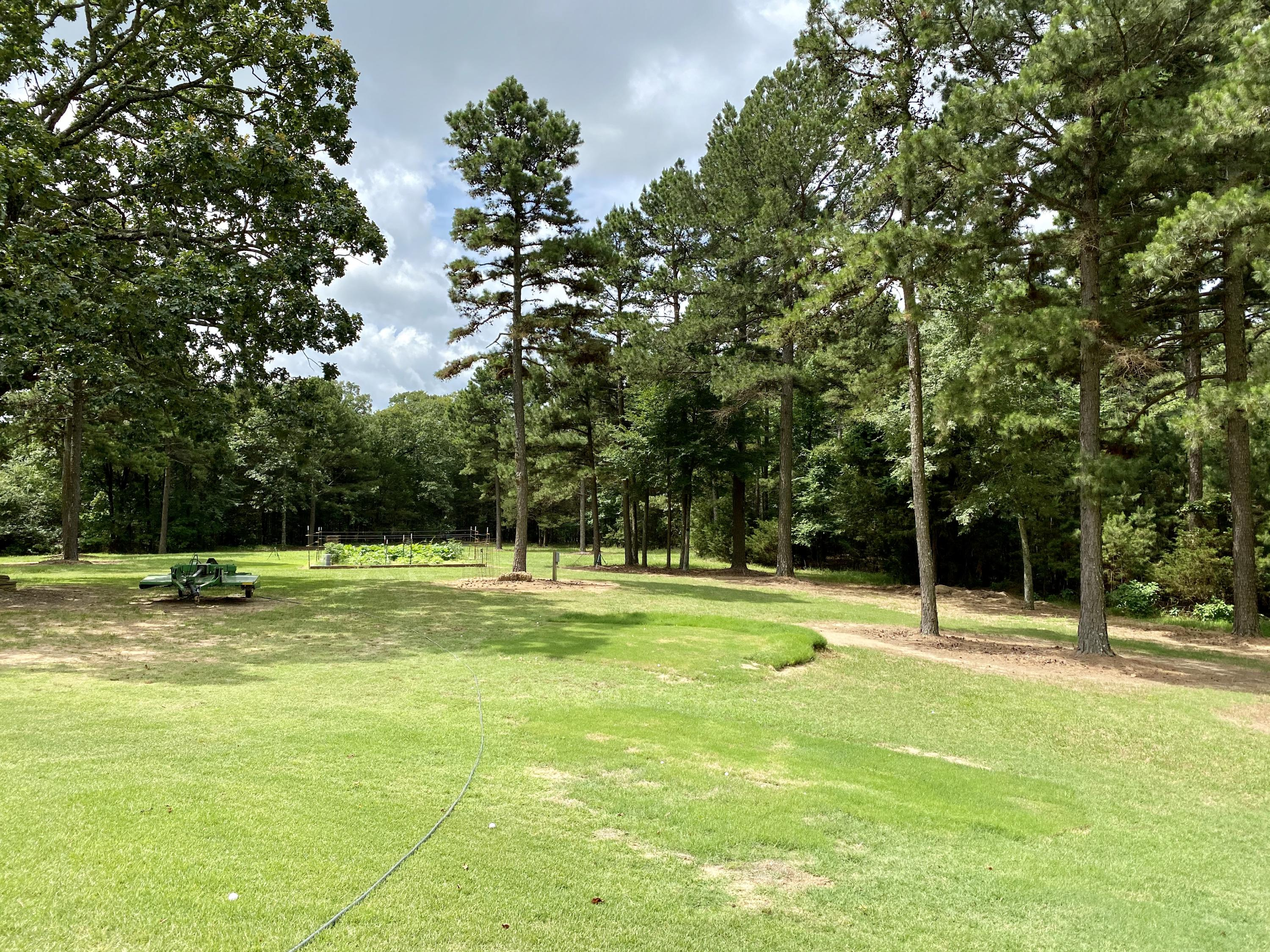 Large photo 106 of home for sale at 201 Turrentine Place , Russellville, AR