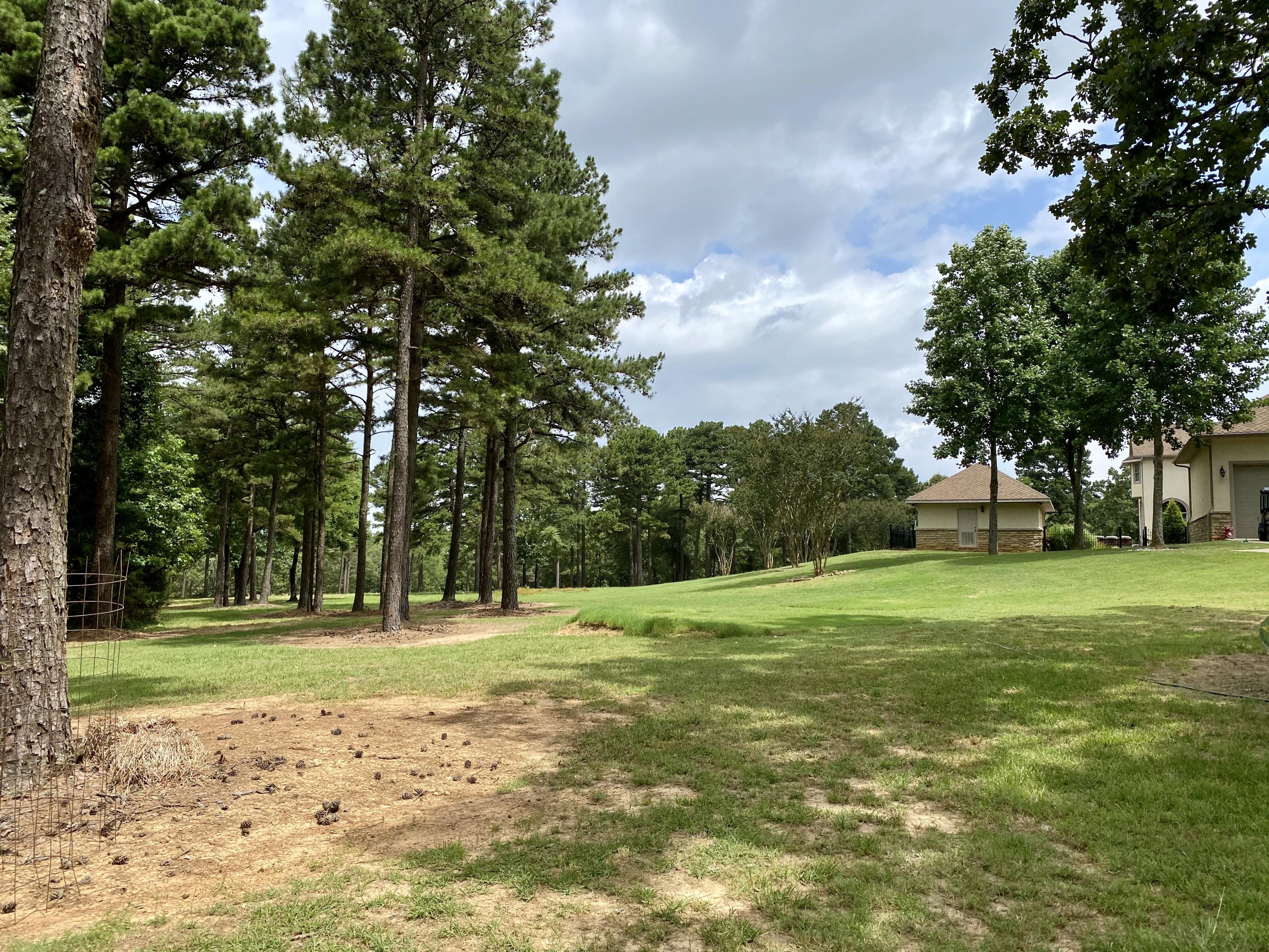 Large photo 105 of home for sale at 201 Turrentine Place , Russellville, AR
