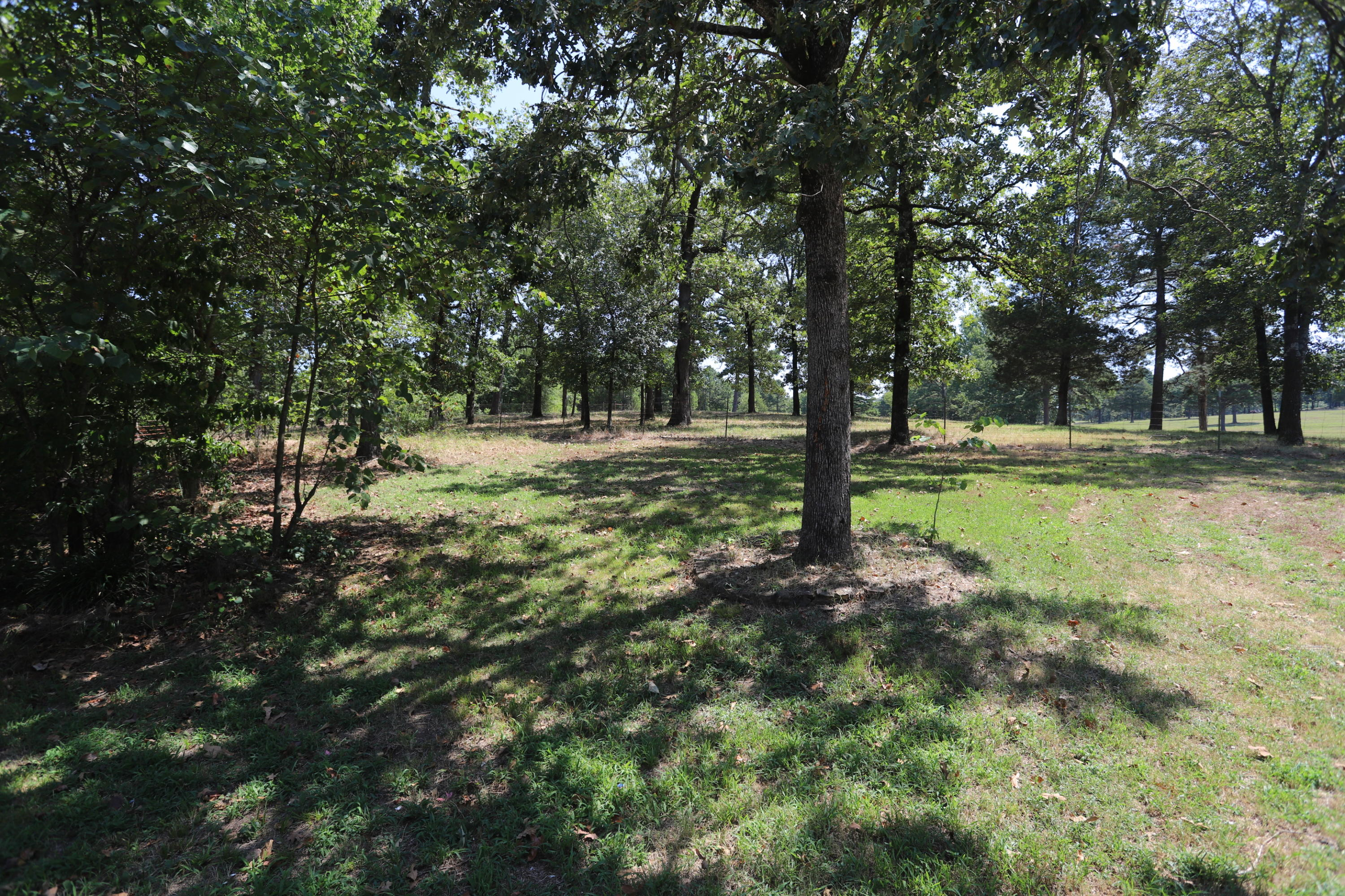 Large photo 17 of home for sale at 340 CR 1719 , London, AR