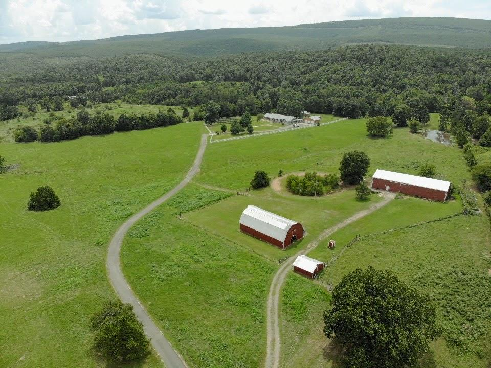 Large photo 94 of home for sale at 23204 State Highway 10 , Ola, AR