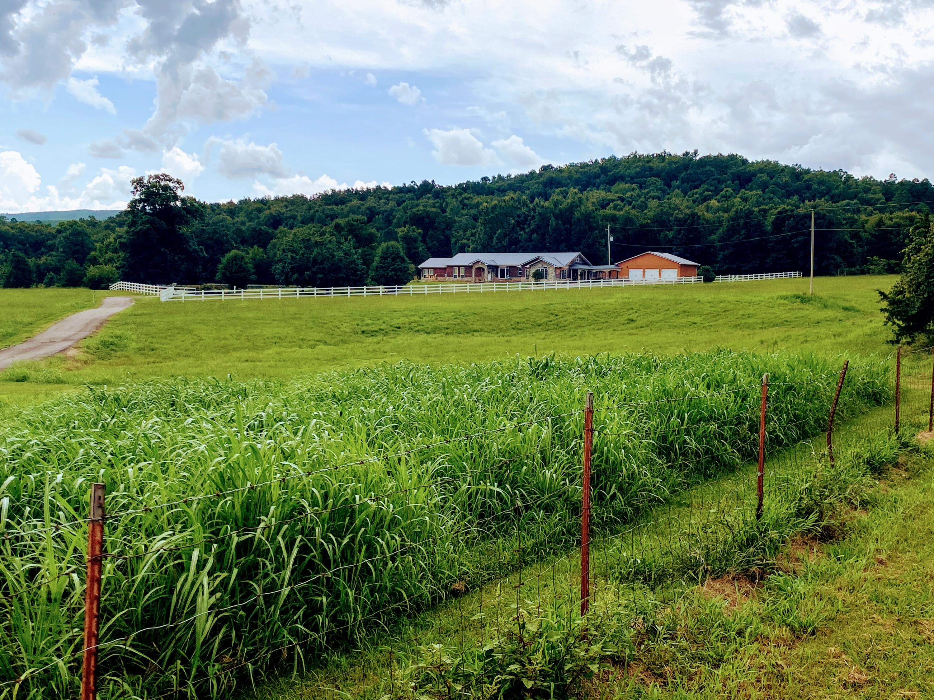 Large photo 55 of home for sale at 23204 State Highway 10 , Ola, AR