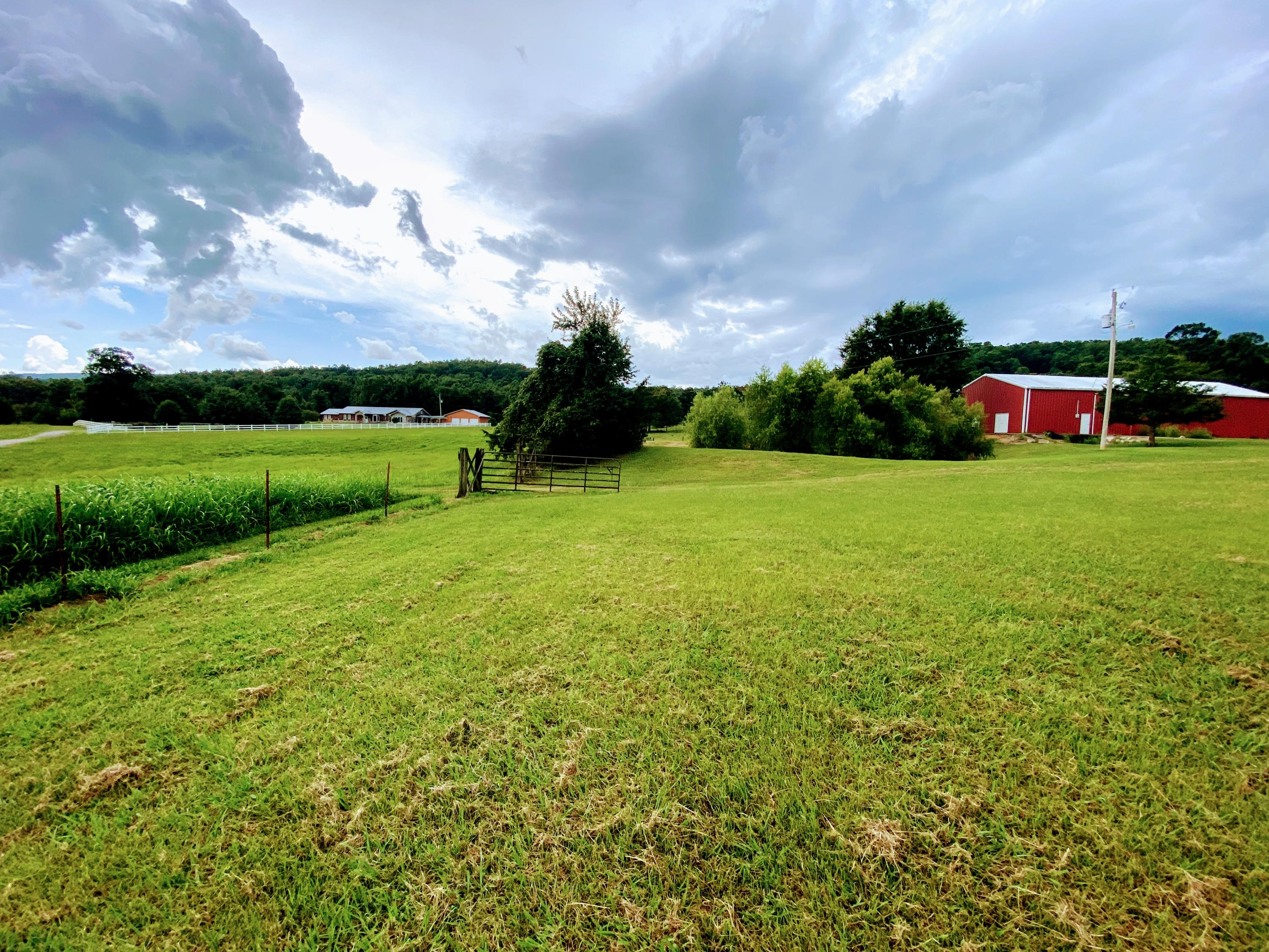 Large photo 56 of home for sale at 23204 State Highway 10 , Ola, AR