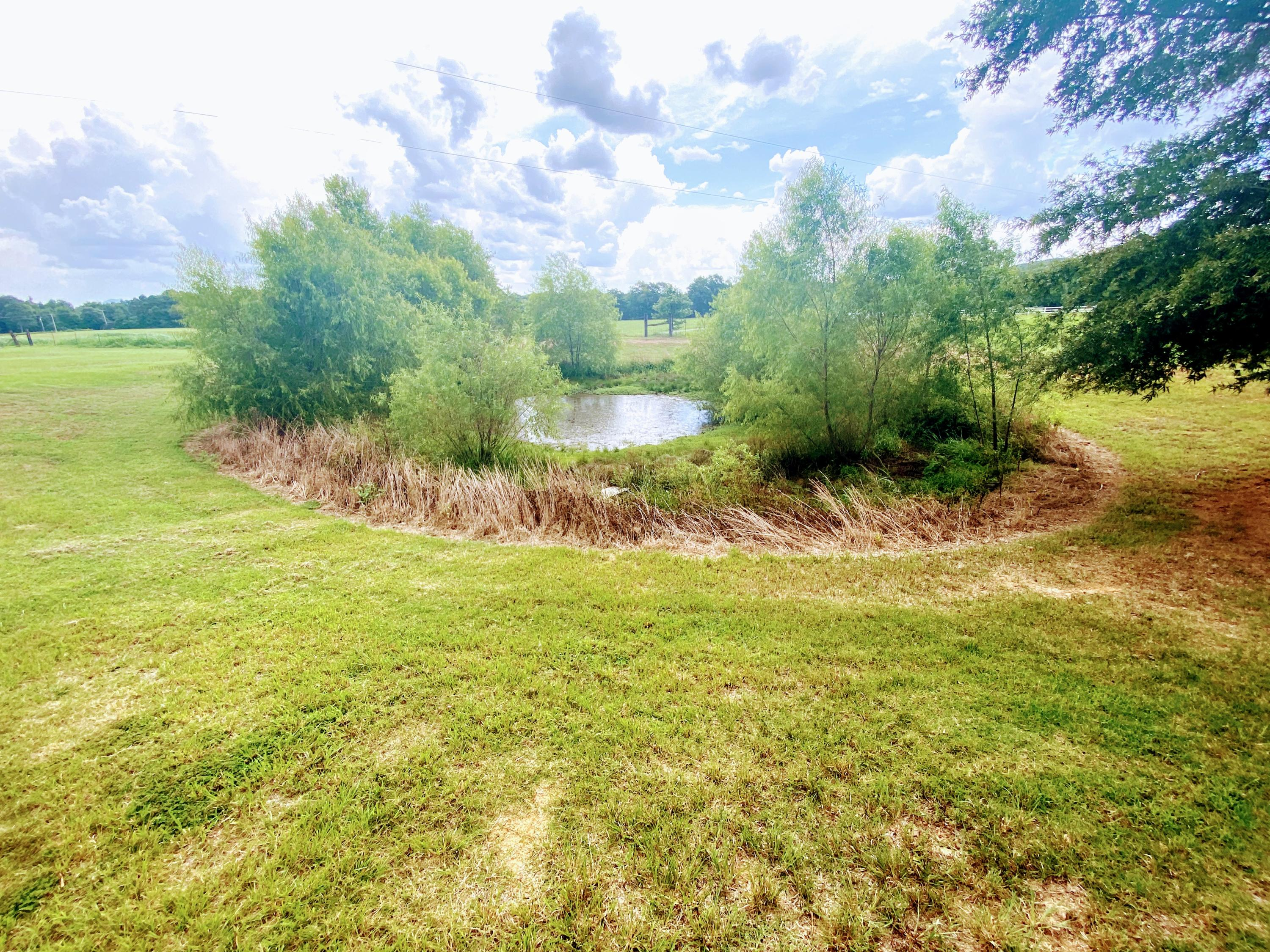 Large photo 69 of home for sale at 23204 State Highway 10 , Ola, AR