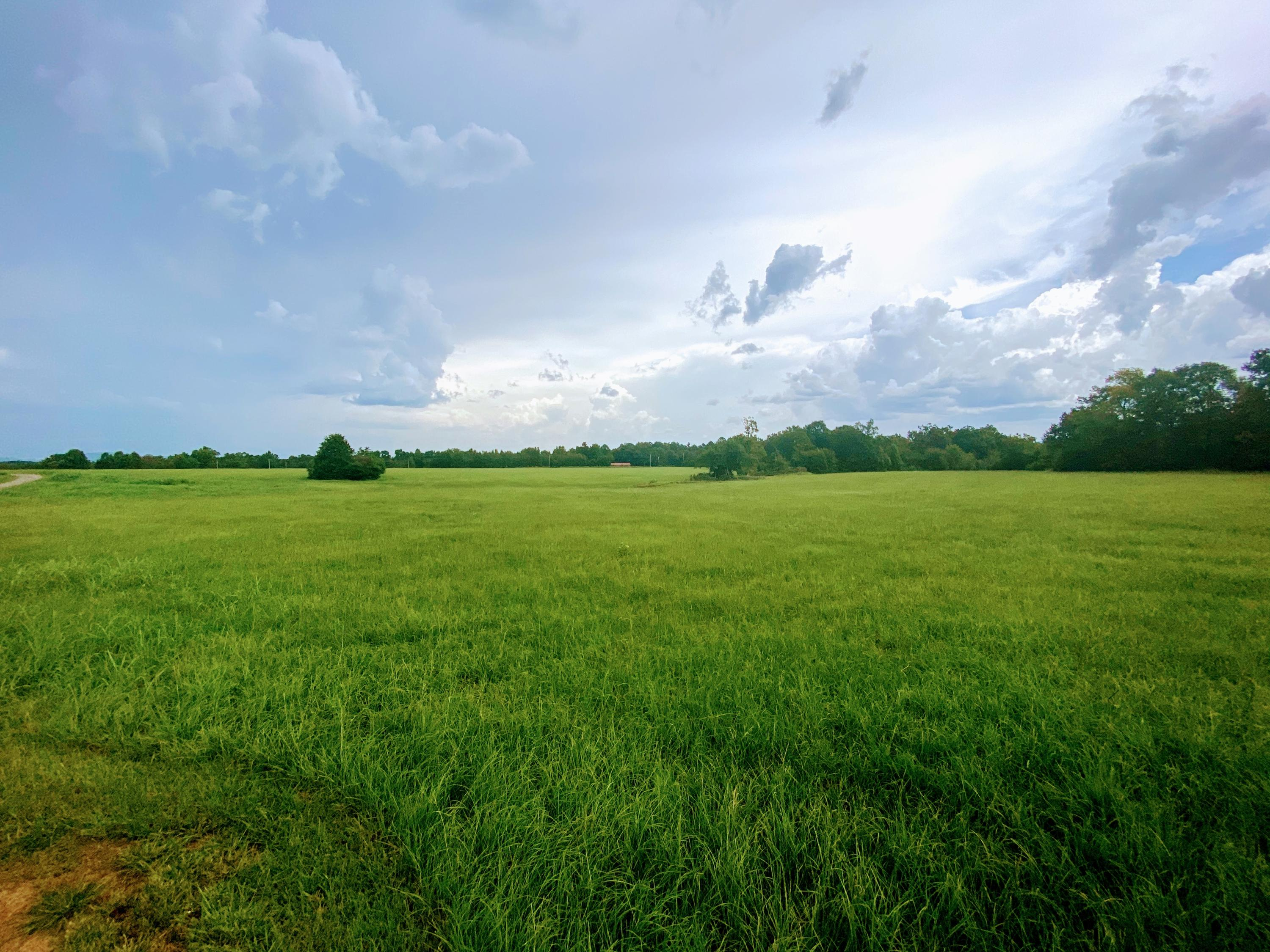 Large photo 98 of home for sale at 23204 State Highway 10 , Ola, AR