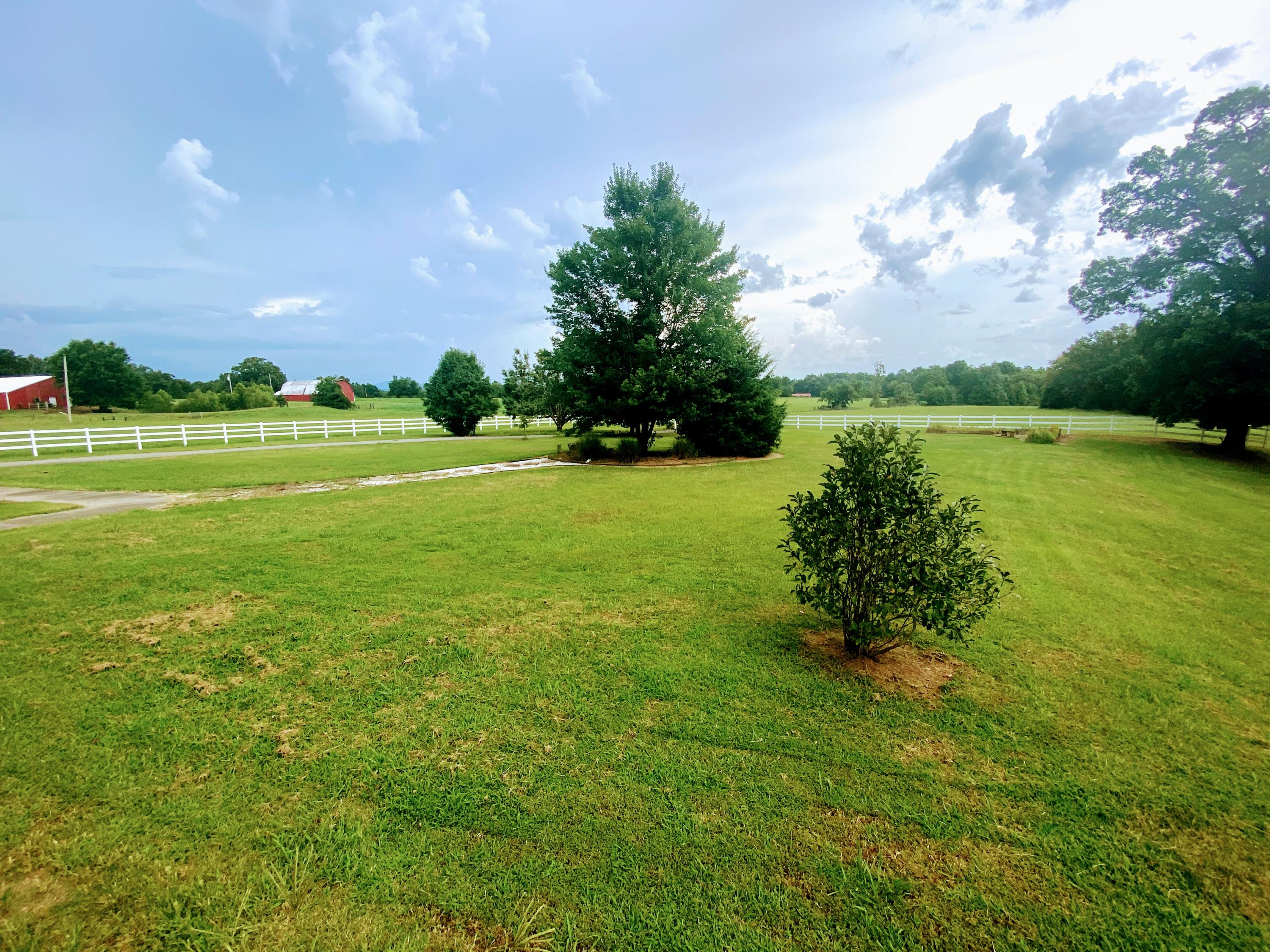 Large photo 93 of home for sale at 23204 State Highway 10 , Ola, AR