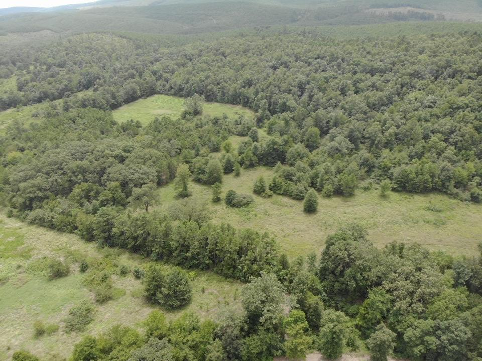 Large photo 95 of home for sale at 23204 State Highway 10 , Ola, AR