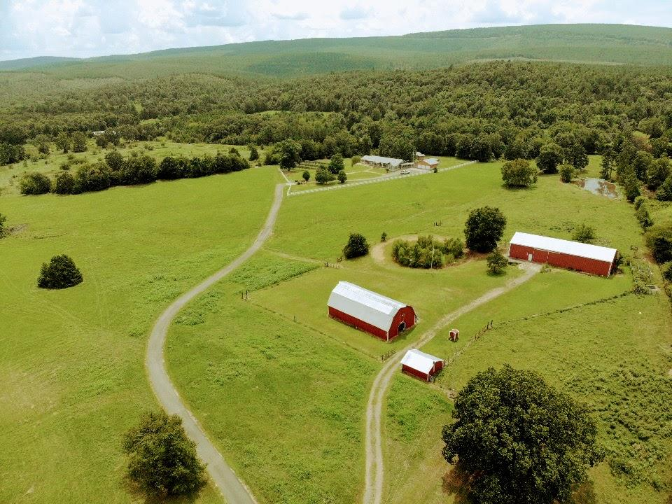 Large photo 85 of home for sale at 23204 State Highway 10 , Ola, AR