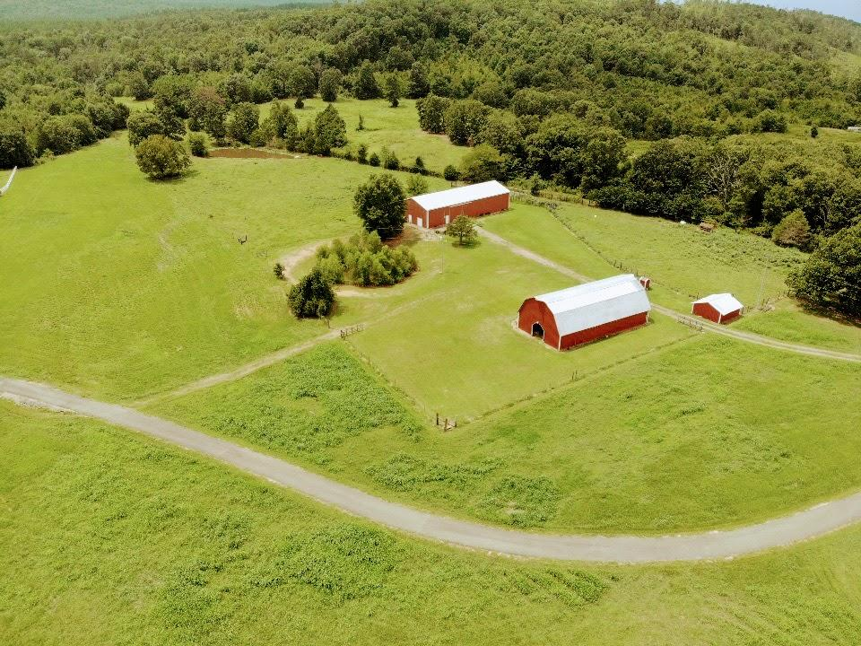 Large photo 87 of home for sale at 23204 State Highway 10 , Ola, AR