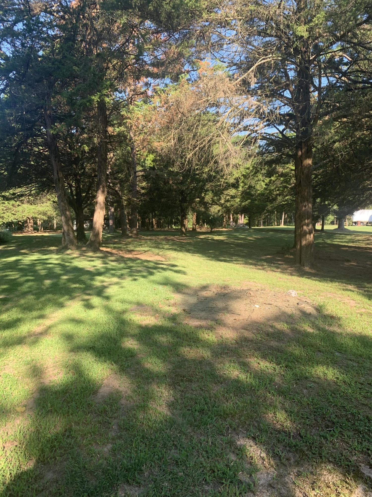 Large photo 9 of home for sale at 827 Sherman Circle, Russellville, AR