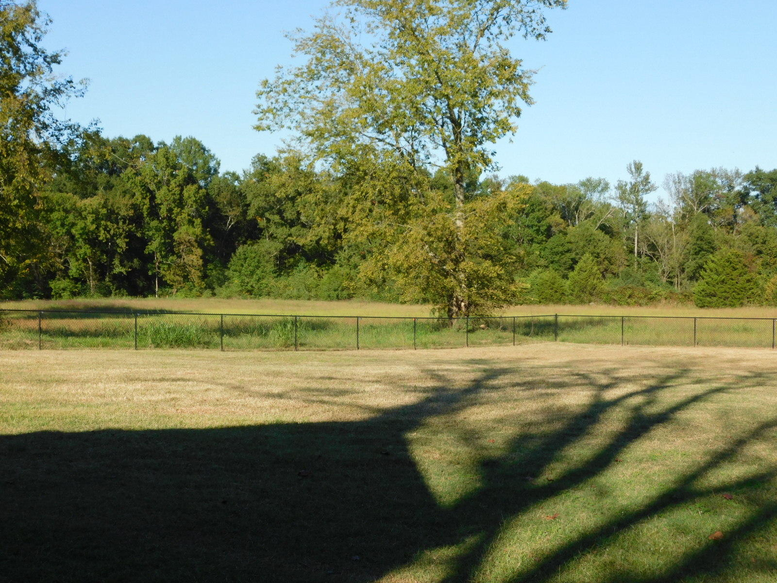 Large photo 4 of home for sale at 27403 State Hwy 27 , Dardanelle, AR