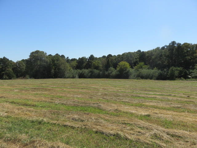Large photo 80 of home for sale at 309 CR 3452 , Clarksville, AR
