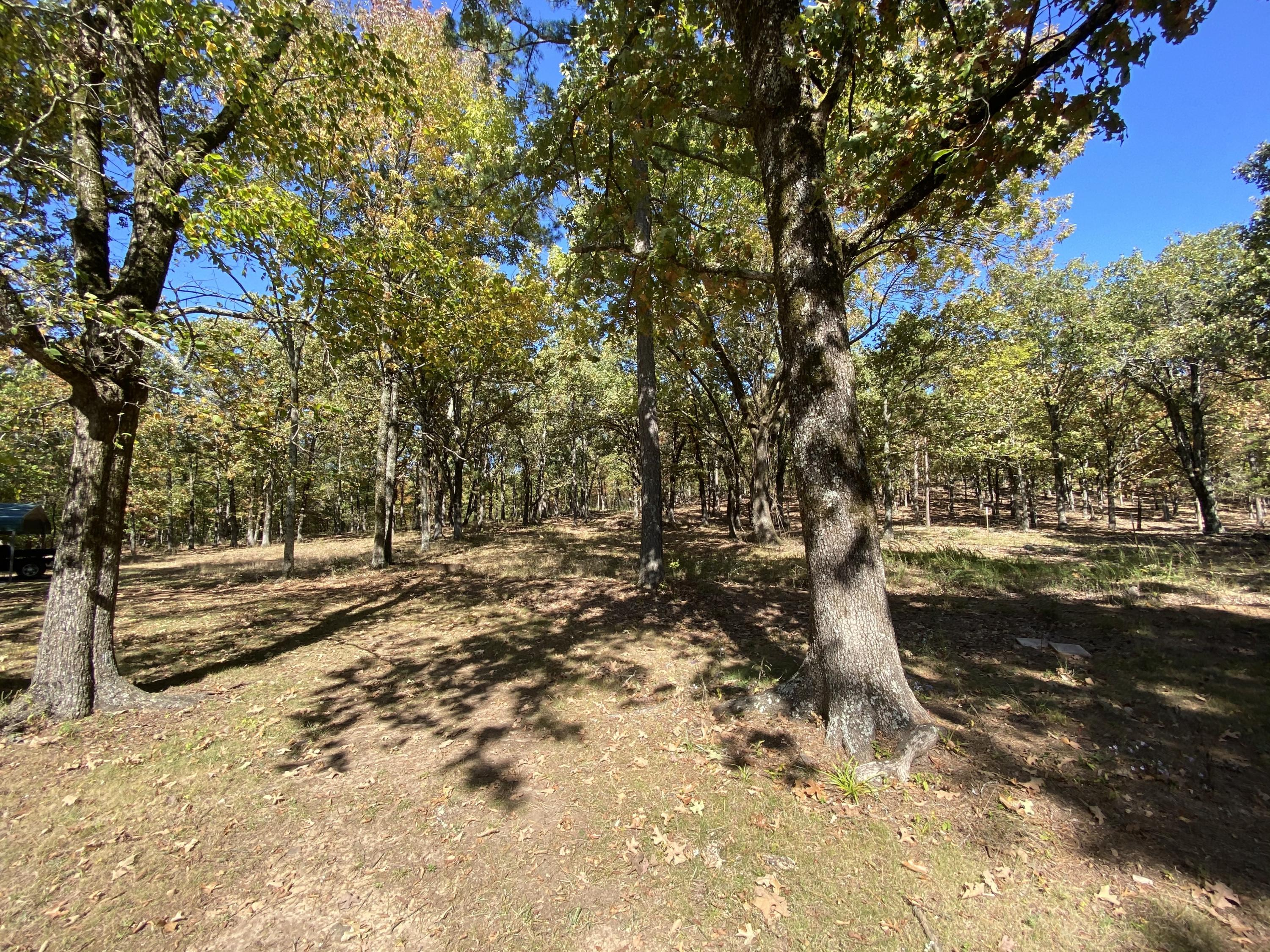 Large photo 12 of home for sale at 665 Star Lane, Hector, AR