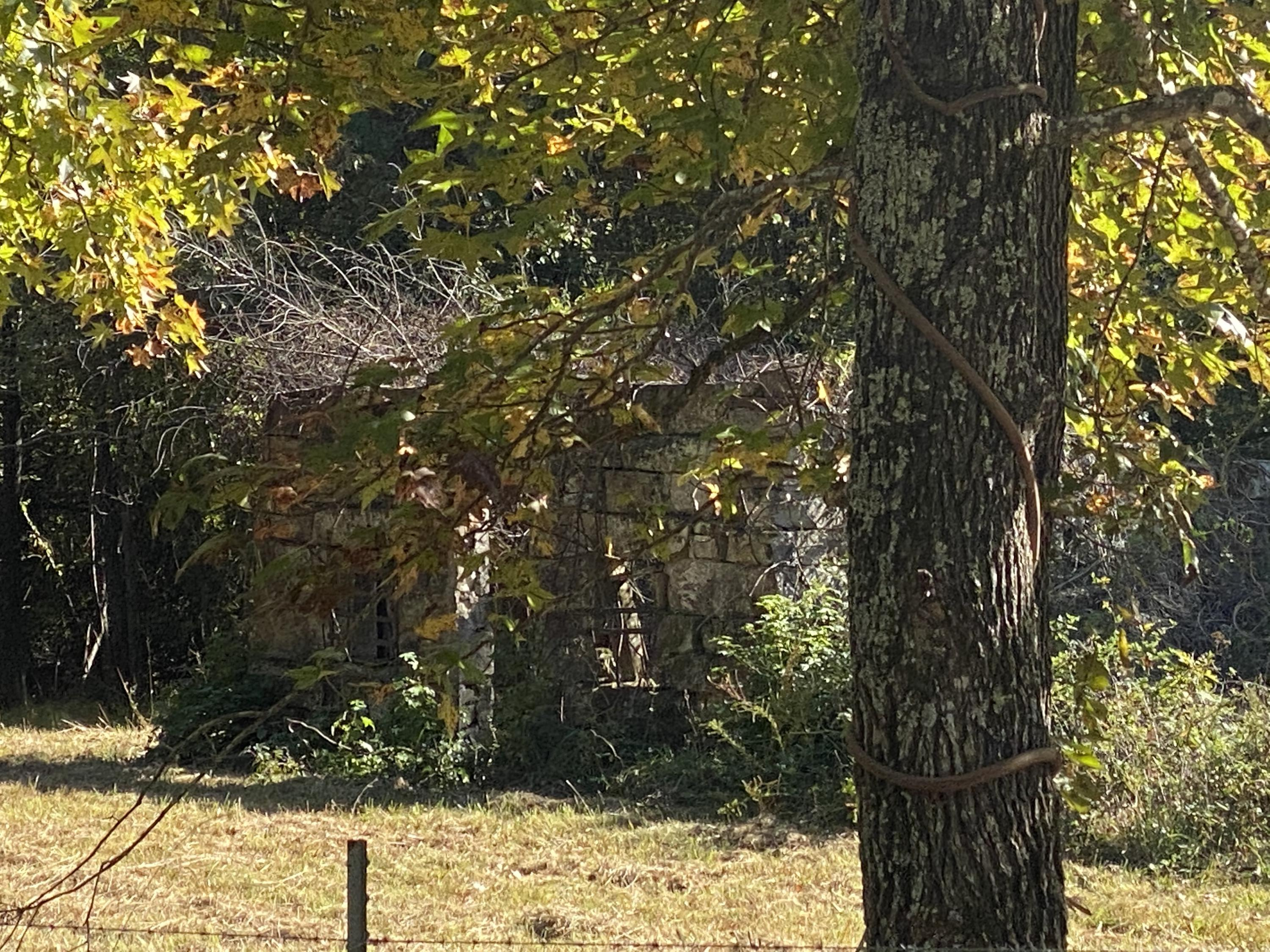 Large photo 62 of home for sale at 665 Star Lane, Hector, AR