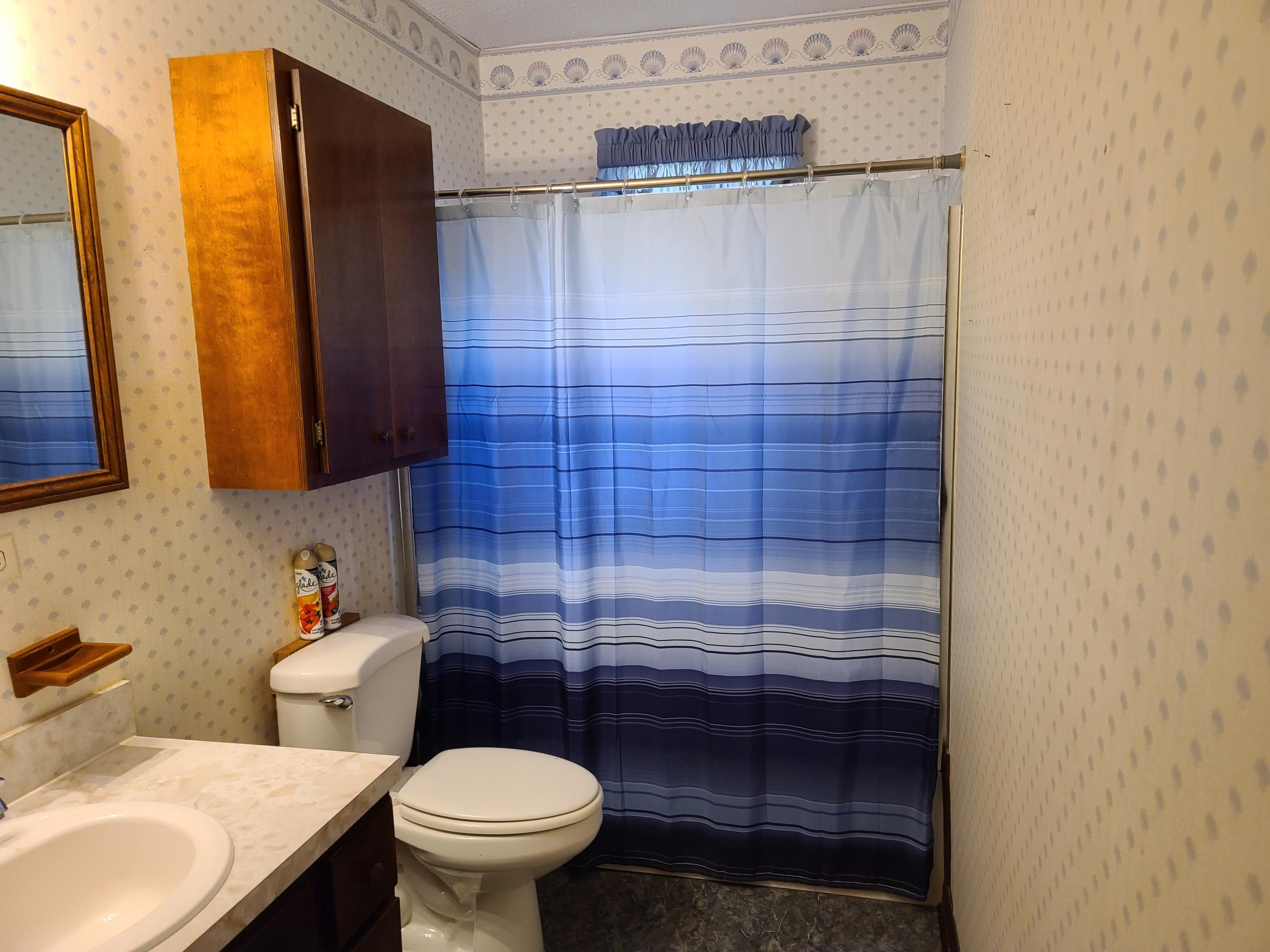 Large photo 9 of home for sale at 403 6th Street, Ola, AR
