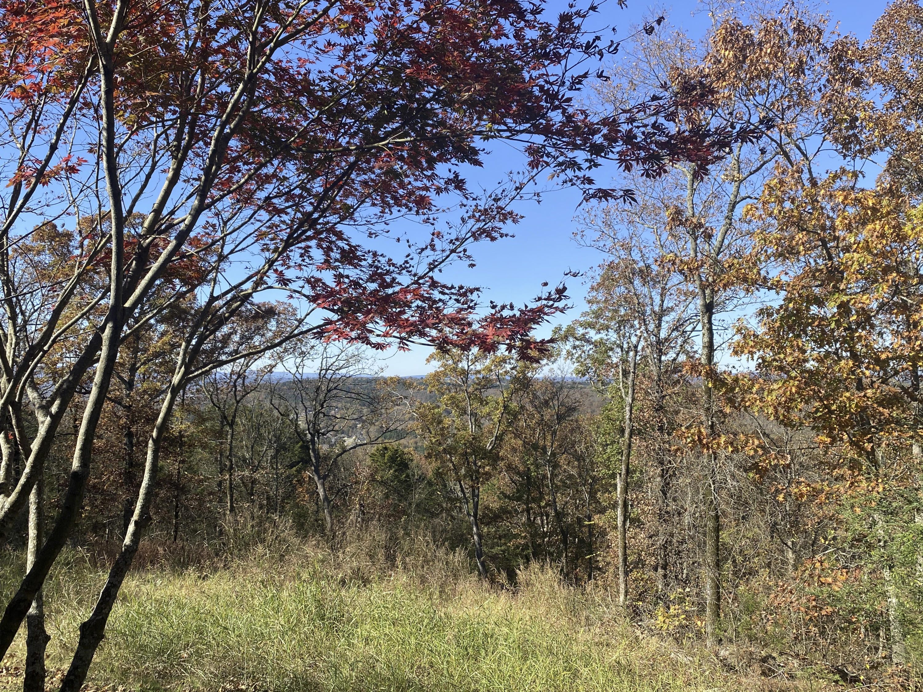 Large photo 39 of home for sale at 3530 crow mt Road, Pottsville, AR